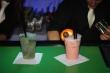 Miešané nápoje - Coctaily na plese
