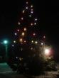 vianočný stromček - Osvetlený vianočný stromček v Dubovej